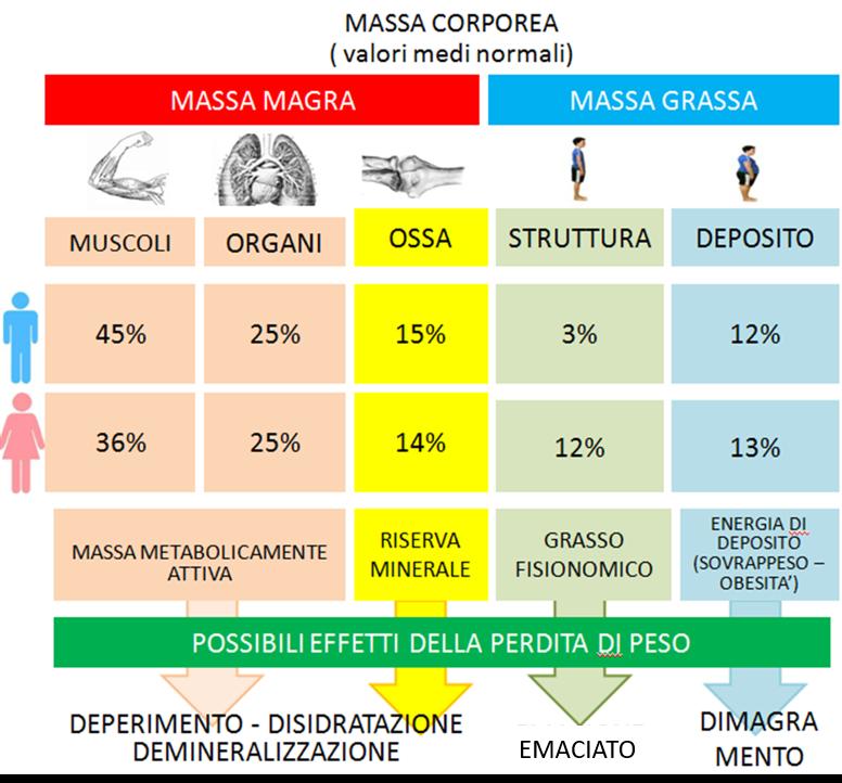BIOIMREDENZIO MASSA MAGRA EMACIATO1