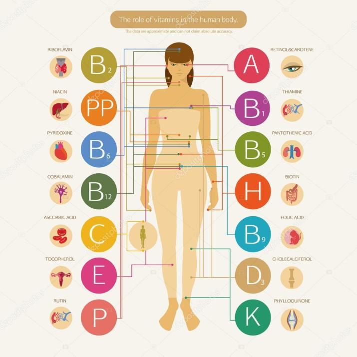 vitamin body okdepositphotos_85708786-stock-illustration-effect-of-vitamins-on-body